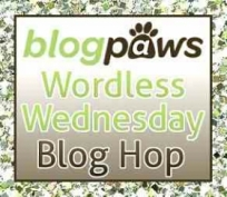 wpid-bp_wordless_wed_hop_logo_2014.jpg