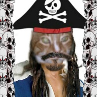 Scourge of the 7 Seas Sammy