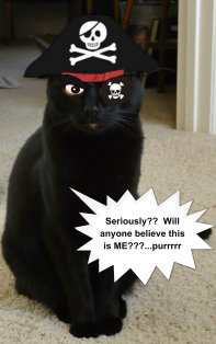 Sailor Pirate Sage